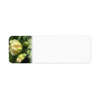 Prickly Pear Cactus Flower Return Address Label