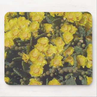 Prickly Pear Cactus Flower Mouse Pads