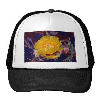 Prickly Pear Cactus Hat