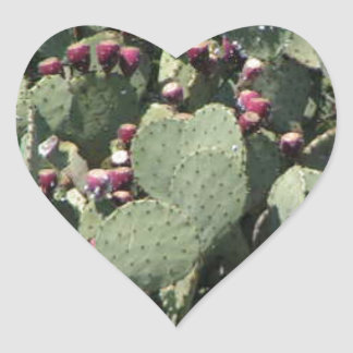 Prickly Pear Cactus Heart Sticker