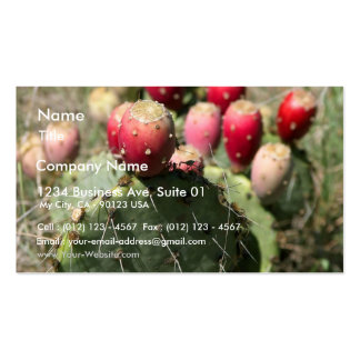 Prickly Pear Cactus In Texas Business Cards