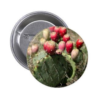 Prickly Pear Cactus In Texas Button