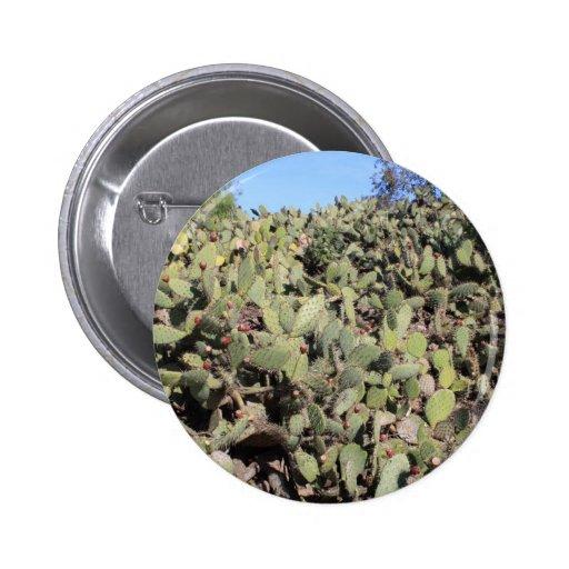 Prickly Pear Cactus Line Pin