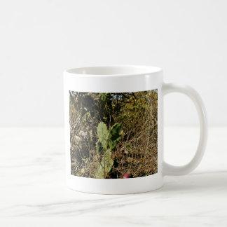 Prickly pear cactus coffee mug