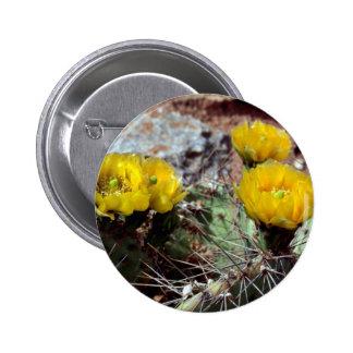 Prickly Pear Cactus Pins