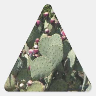 Prickly Pear Cactus Triangle Sticker