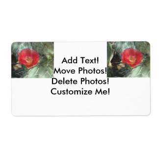 Prickly Pear Green with Red Bloom Shipping Label