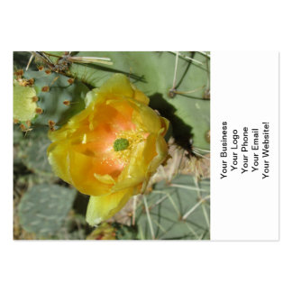 Prickly Pear Green Yellow Bloom Pack Of Chubby Business Cards