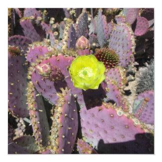 Prickly Pear Purple Yellow 13 Cm X 13 Cm Square Invitation Card