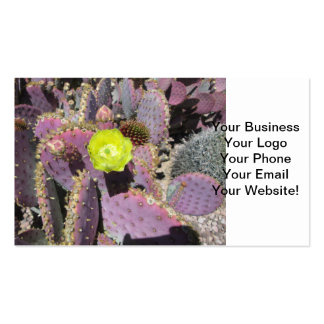 Prickly Pear Purple Yellow Pack Of Standard Business Cards