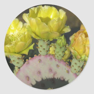 Prickly Pear Round Sticker