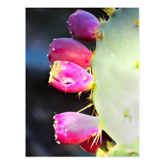 Prickly Pear Watercolor, Personalize! Postcard