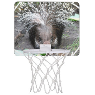Prickly Porcupine Mini Basketball Hoop