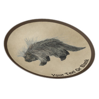 Prickly Porky On Old Paper Plate