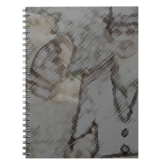 Pride and Prejudice Spiral Notebook