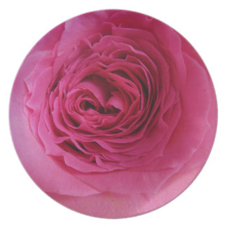 Prideful Pink Rose Party Plate
