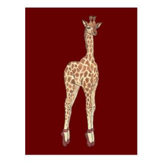 Prima Donna Giraffe Postcard