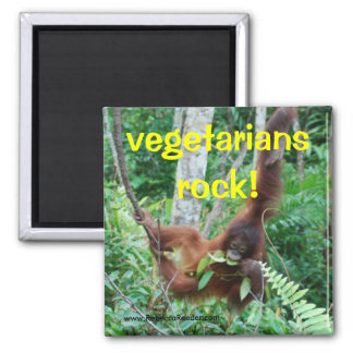 Primate Vegetarians rock! Magnet