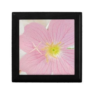 primrose pink gift box