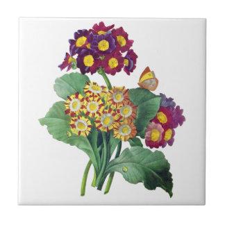 Primula Auricula - Cowslip- Pierre Joseph Redoute Ceramic Tile