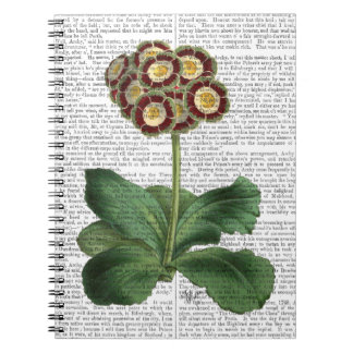 Primula Auricula Red Notebooks