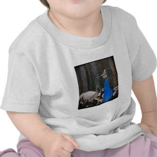 Prince and Tomte (Gnome) in the Forest Tees