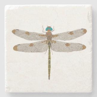 Prince Baskettail Dragonfly Coaster