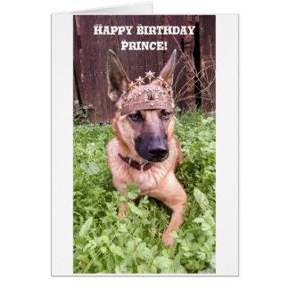 Prince Birthday Card with Belgian Malinois