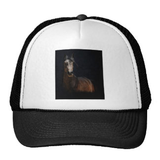 Prince of Darkness Cap