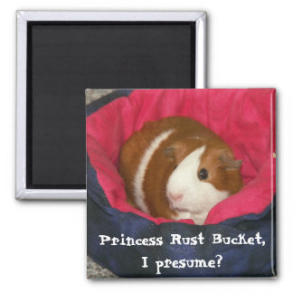 Princess Rust Bucket, I presume? Magnet