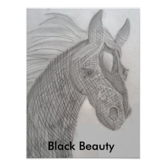 Princess Toytastic's Black Beauty Poster