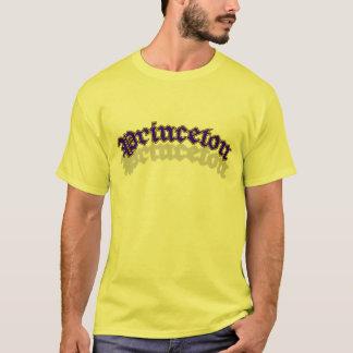 Princeton OE shirt