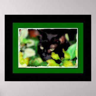 Print of a Black Cat