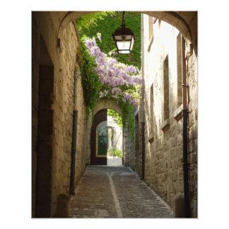 PRINT -  St Remy France