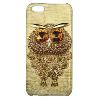 Printed Gold & Amber Owl Jewel Case For iPhone 5C