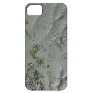 Prints In The Sand iPhone 5 Case