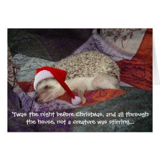 Prissy Christmas Card 2006
