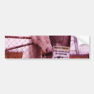 Private Property lavender Horse Bumper Sticker