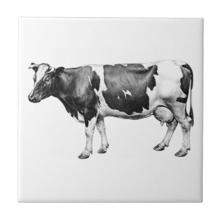 Prizewinning Dairy Cow Small Square Tile