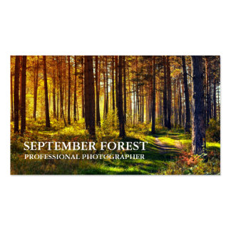 Pro Photography (Forest) Pack Of Standard Business Cards