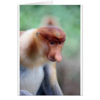 Proboscis monkey Labuk Bay Borneo Card