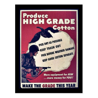 Produce High Grade Cotton Postcard
