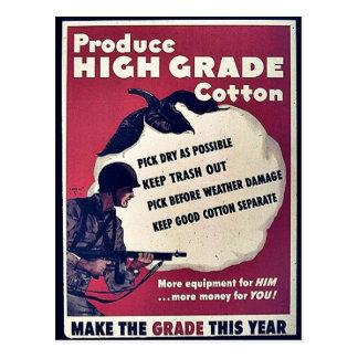Produce High Grade Cotton Post Card