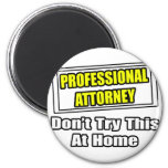 Professional Attorney...Don't Try This At Home