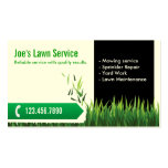 Professional Mowing/Lawn Care Business Card