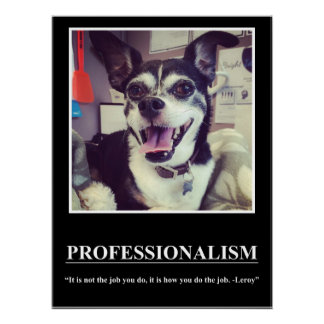Professionalism by Leroy Poster