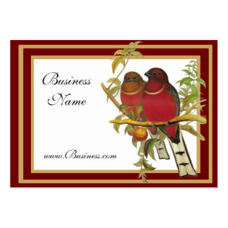 Profile Card Vintage Red-headed Trogon Birds Pack Of Chubby Business Cards