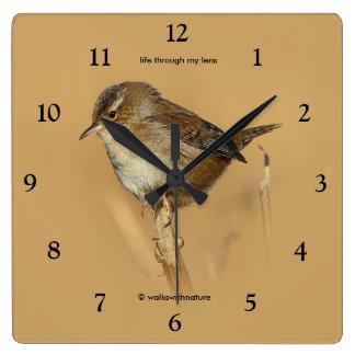 Profile of a Beautiful Marsh Wren Square Wall Clock