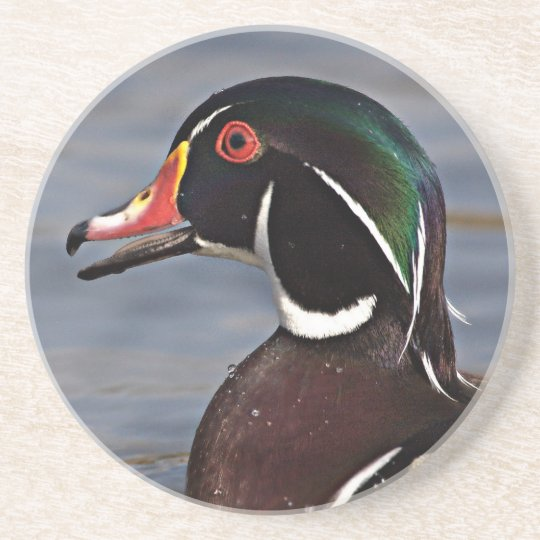 Profile of A Wood duck Coaster