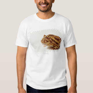 Profile of Argentine Horned Frog Tshirts